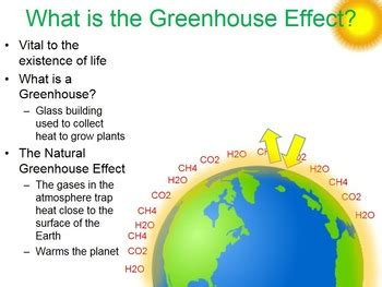 EnvironmentThe Greenhouse Effect term paper 1346